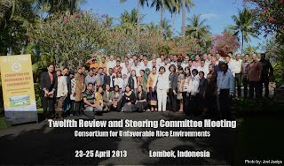 Participants of CURE Twelfth Review and Steering Committee Meeting, April 2013